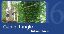 Cable Jungle Adventure