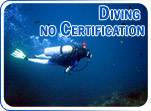 Diving no Certification