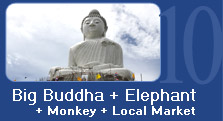 Big Buddha + Elephant + Monkey + Local Market