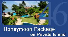 Honeymoon Package on Coconut Island